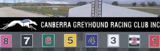 Changing Of The Guards At Canberra Greyhounds