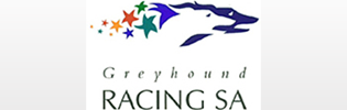 Greyhound Racing Prizemoney Up 21% In South Australia