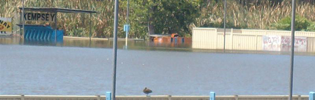 Kempsey Greyhound Track Under Water