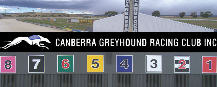 Small Greyhound Race Program Produces Good Racing At Canberra