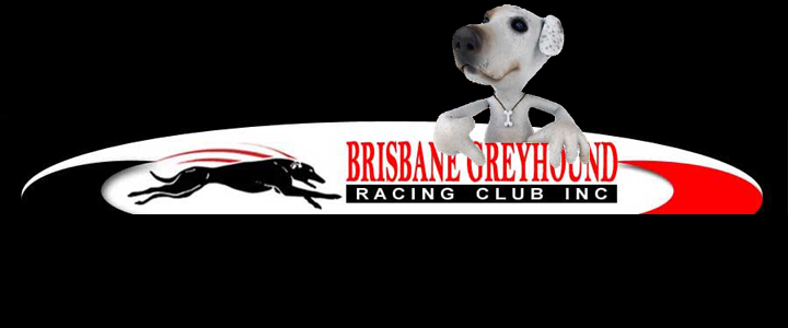 Brisbane Greyhounds & Uni Students Do It Doggy Style Thursday Night