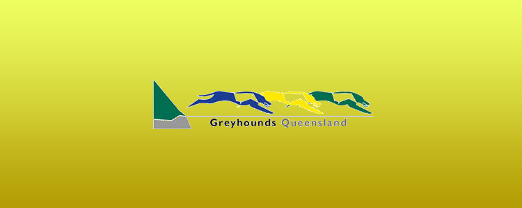 Cairns And Greyhounds Queensland Reach Agreement
