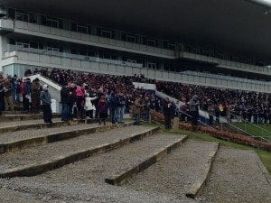 2014 Irish Cup Coursing Crowd