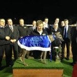 2014 Bendigo Cup Winner Warrior King