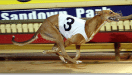 Group one greyhound