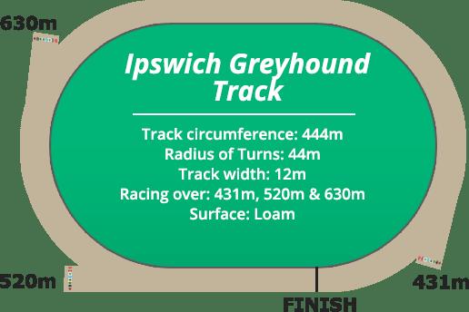 ipswich_greyhound