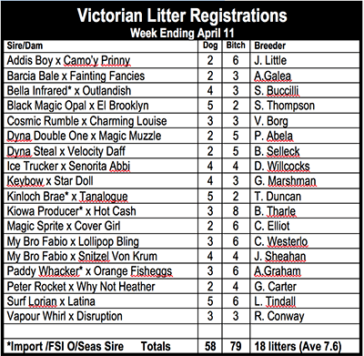 Victorian litter registrations