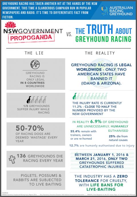 Greyhound infographic