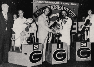 1979 Brisbane Cup placegetters