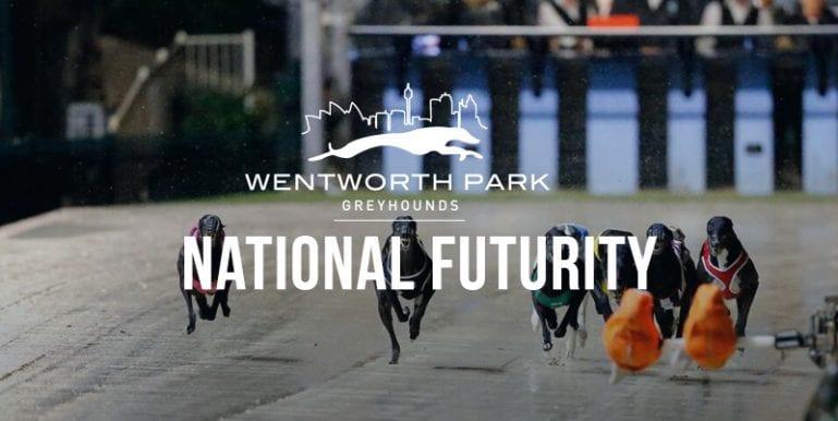 National Futurity betting